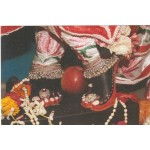 Deity Pictures of Lotus Feet of Lord Krishna